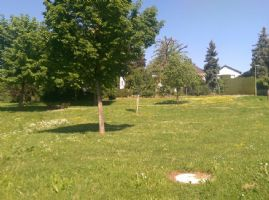 Bad Vilbel Industrieflächen, Lagerflächen, Produktionshalle, Serviceflächen